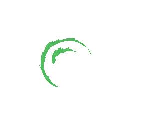 Fotograaf Nijmegen bruidsfotograaf reportagefotograaf bedrijfsfotograaf